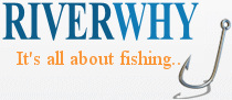 Fishing Lessons Logo
